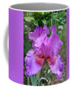 Persian Berry Coffee Mug