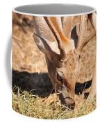 Persian Fallow Deer Coffee Mug