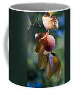 Persimmon Tree Coffee Mug