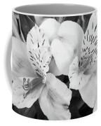 Peruvian Lilies  Flowers Black And White Print Coffee Mug