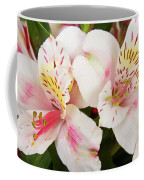 Peruvian Lilies  Flowers White And Pink Color Print Coffee Mug