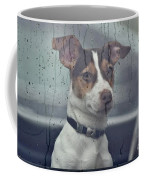 Pet Looking Out Car Window On Rainy Day Coffee Mug