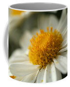 Petals And Pollen Coffee Mug