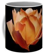 Petals Of Orange Sorbet Coffee Mug