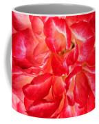 Petals Of Rose Coffee Mug