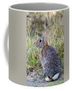 Peter Cottontail Coffee Mug
