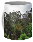 Peters Canyon In The Rain 8 Coffee Mug