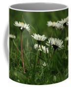 Petite Daisies 5 Coffee Mug