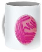 Petri Dish Of Acinetobacter Baumannii Coffee Mug