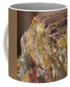Petrified Wood Coffee Mug