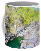 Petrohue River In Vicente Perez Rosales National Park Near Puerto Montt-chile Coffee Mug
