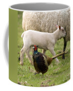 Pheasant And Lamb Coffee Mug