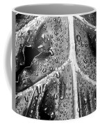 Philodendron Rain - Bw Coffee Mug