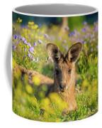 Photogenic Kangaroo Coffee Mug