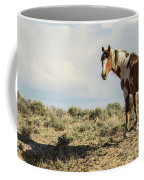 Picasso Looks Over Sand Wash Coffee Mug