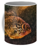 Pices In Aquarium Coffee Mug