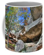 Pickle Spring Sandstone Coffee Mug