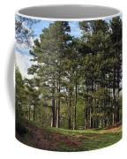 Picnic Anyone? Coffee Mug