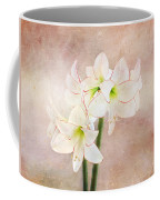 Picotee Amaryllis Coffee Mug