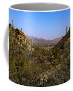 Picture Rocks 24 Coffee Mug