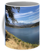 Picturesque View Coffee Mug