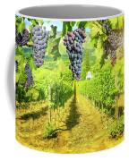 Picturesque Vineyard At Sunset Coffee Mug