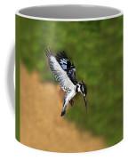 Pied Kingfisher Coffee Mug by Tony Beck