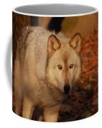 Piercing Eyes Coffee Mug