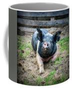 Pig Out Coffee Mug