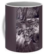 Pigeon Forge River Great Smoky Mountains Bw Coffee Mug