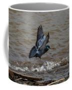Pigeon Getting Ready To Land Coffee Mug