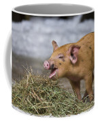 Piglet Eating Hay Coffee Mug