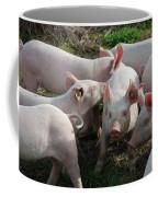 Piglets Coffee Mug