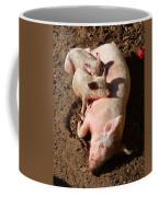 Pigs Coffee Mug