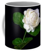Pikake Coffee Mug