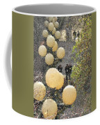 Pike Hillclimb Coffee Mug