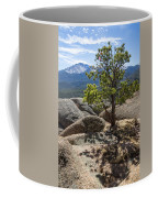 Pikes Peak Bristlecone Coffee Mug