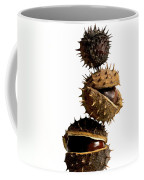 Pile Of Chestnuts Coffee Mug