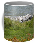 Pile Of Rocks On Shoreline Coffee Mug