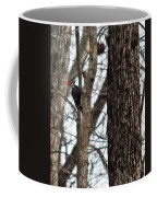 Pileated Billed Woodpecker Coffee Mug