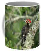 Pileated Perch Coffee Mug