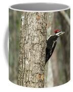 Pileated Searching - Looking Coffee Mug