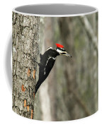 Pileated Woodpecker Looking For A Perspective Mate Coffee Mug