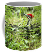Pileated Woodpecker On The Ground No. 1 Coffee Mug