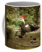 Pileated Woodpecker1 Coffee Mug