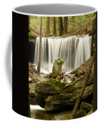 Pillar And Waterfall Coffee Mug