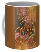 Pin Cushion Protea Coffee Mug