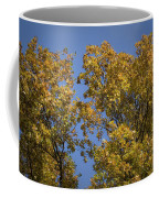 Pin Oaks In The Fall No 1 Coffee Mug