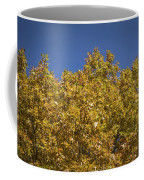 Pin Oaks In The Fall No 2 Coffee Mug
