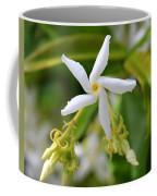 Pin Wheel Coffee Mug